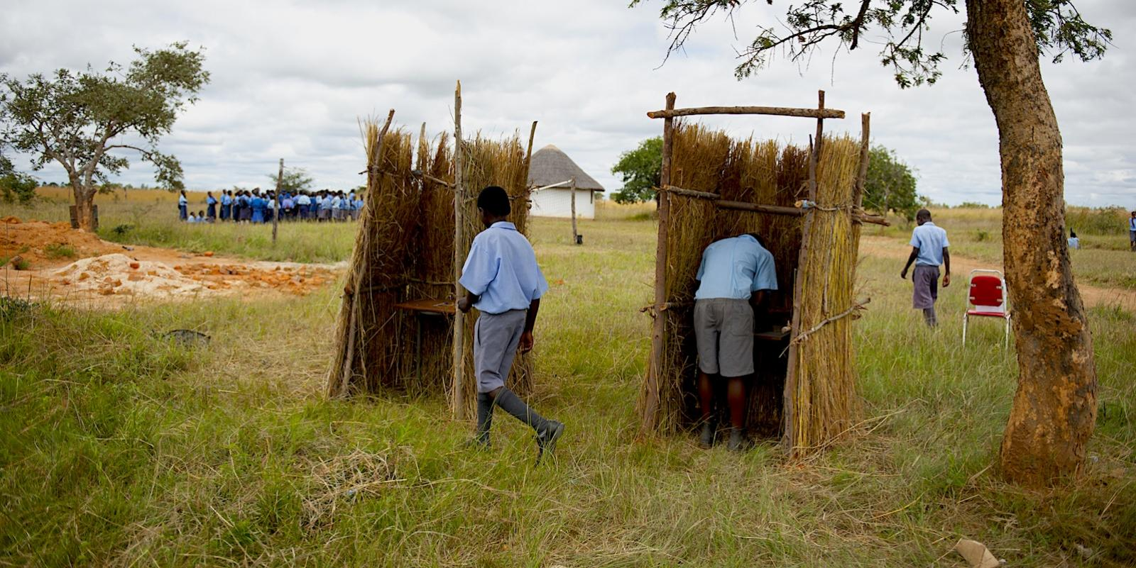 Two boys voting in booths made of grass