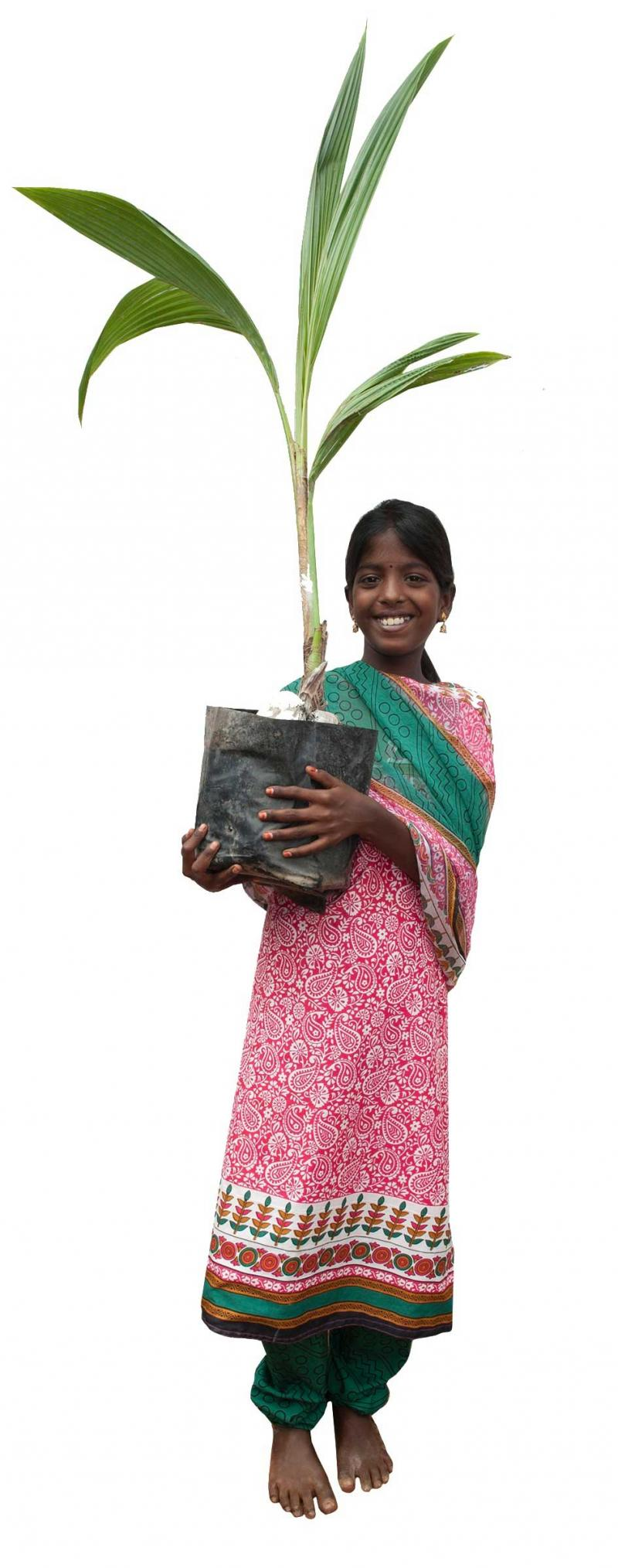 Girl holding coconut plant